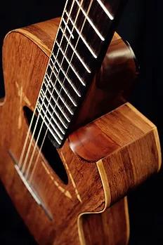 Bamboo Folk Guitars
